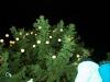 30.11.2014_joulutulede_syytamine_GALERII-25