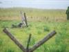 29.08.20015_Kybassaare dessant_G-21