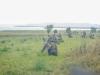 29.08.20015_Kybassaare dessant_G-23