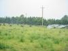 29.08.20015_Kybassaare dessant_G-25