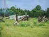 29.08.20015_Kybassaare dessant_G-51