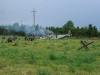 29.08.20015_Kybassaare dessant_G-83