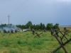 29.08.20015_Kybassaare dessant_G-86