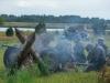 29.08.20015_Kybassaare dessant_G-94