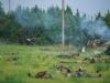 29.08.20015_Kybassaare dessant_G-99