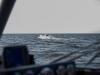 10.04.2015_piirivalvelaeva veeskamine_GALERII-38