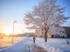 30.12.2014_talvenauding_26.ja 27. dets._2014_GALERII-103
