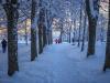 30.12.2014_talvenauding_26.ja 27. dets._2014_GALERII-112