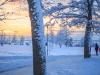 30.12.2014_talvenauding_26.ja 27. dets._2014_GALERII-116