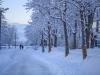 30.12.2014_talvenauding_26.ja 27. dets._2014_GALERII-126