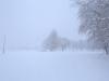 30.12.2014_talvenauding_26.ja 27. dets._2014_GALERII-14