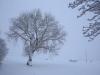 30.12.2014_talvenauding_26.ja 27. dets._2014_GALERII-16