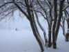 30.12.2014_talvenauding_26.ja 27. dets._2014_GALERII-17