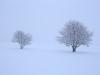 30.12.2014_talvenauding_26.ja 27. dets._2014_GALERII-19