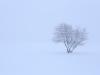 30.12.2014_talvenauding_26.ja 27. dets._2014_GALERII-20