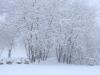 30.12.2014_talvenauding_26.ja 27. dets._2014_GALERII-21