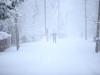 30.12.2014_talvenauding_26.ja 27. dets._2014_GALERII-24