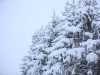 30.12.2014_talvenauding_26.ja 27. dets._2014_GALERII-26