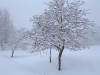 30.12.2014_talvenauding_26.ja 27. dets._2014_GALERII-3