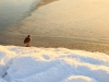 30.12.2014_talvenauding_26.ja 27. dets._2014_GALERII-38