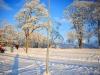 30.12.2014_talvenauding_26.ja 27. dets._2014_GALERII-42