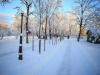 30.12.2014_talvenauding_26.ja 27. dets._2014_GALERII-49
