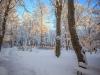 30.12.2014_talvenauding_26.ja 27. dets._2014_GALERII-60