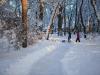 30.12.2014_talvenauding_26.ja 27. dets._2014_GALERII-65