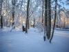 30.12.2014_talvenauding_26.ja 27. dets._2014_GALERII-69