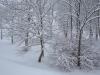 30.12.2014_talvenauding_26.ja 27. dets._2014_GALERII-8