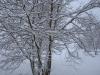 30.12.2014_talvenauding_26.ja 27. dets._2014_GALERII-9