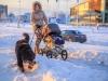 30.12.2014_talvenauding_26.ja 27. dets._2014_GALERII-96