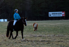 Hobusega sepa juurde